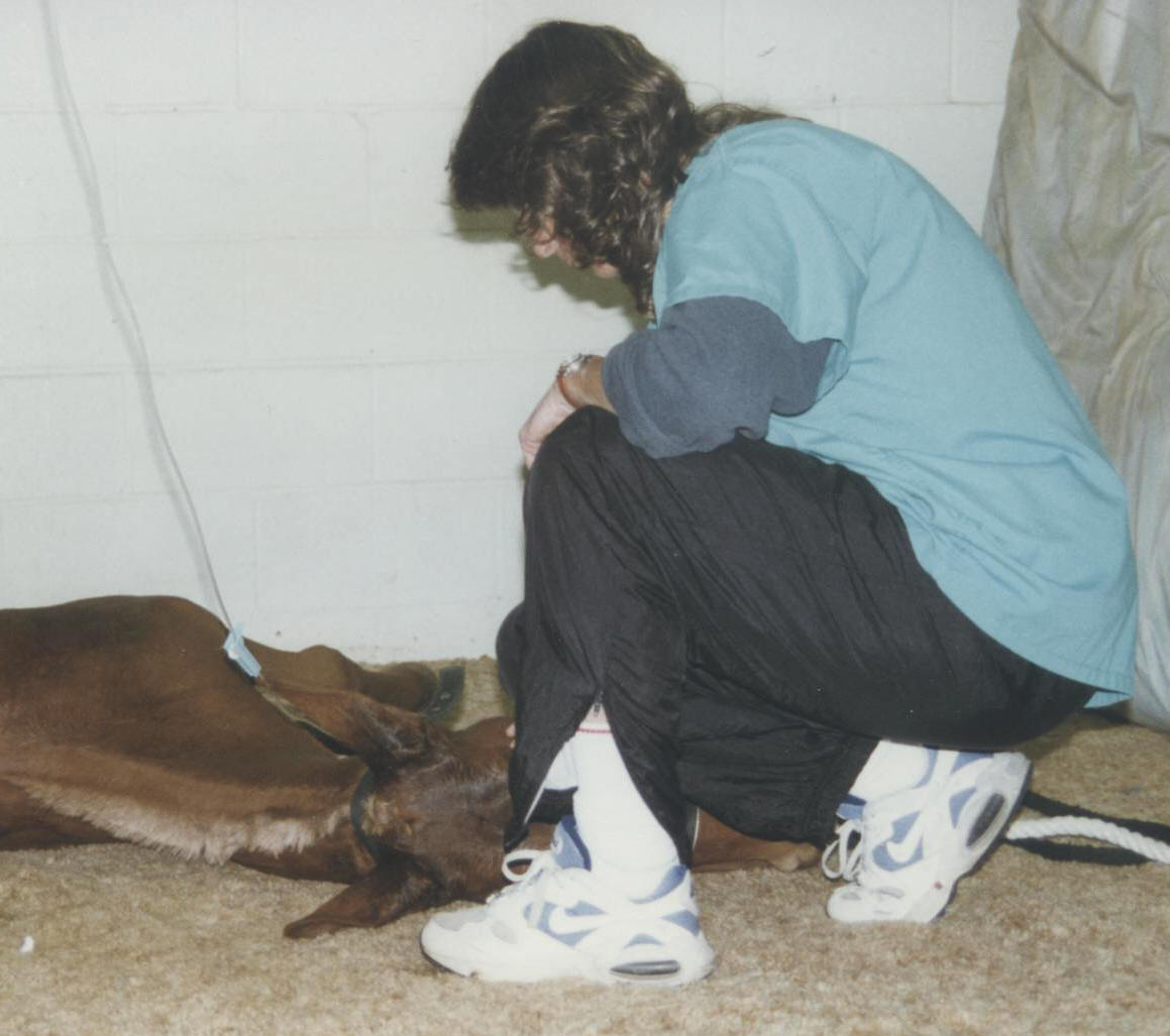 Dianne continues to monitor Cowboy's vital signs as he come out of sedation.